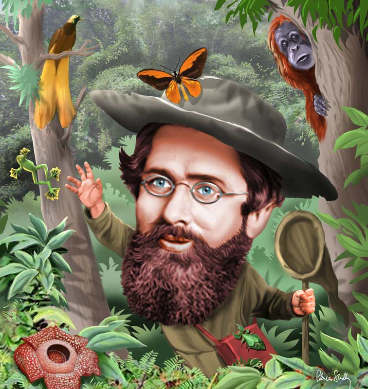 alfred russel wallace essay In alfred russel wallace: a life, peter raby (samuel butler) shows that, save   of specimens wallace had collected in the amazon, the essay that wallace sent.
